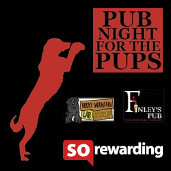 Pub night for the Pups