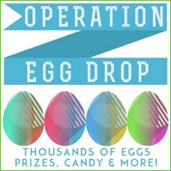 Operation Egg Drop